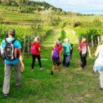Annunciate misure straordinarie per sostenere il turismo del FVG