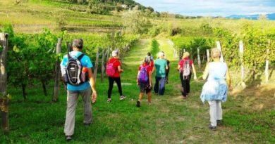 Turismo sostenibile in Friuli: verso la green mobility
