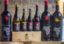 """Per il  vino della solidarietá  imbottigliamento virtuale dell'Associazione """"Diamo Un Taglio Alla Sete"""""""