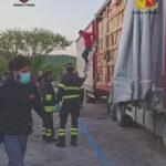 Cinque migranti dall'Afghanistan nascosti in un TIR, sorpresi a Fernetti dalla Polizia