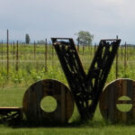 Cantine Aperte Insieme: nel fine settimana visite nelle aziende vinicole, reali e virtuali