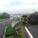 Si ribalta camion con pulcini in A23 tra Palmanova e Udine