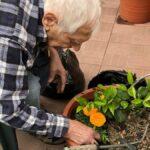 """Terapia """"verde"""" per gli anziani della RSA di Gemona in quarantena da coronavirus"""