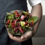 Friuli Venezia Giulia. La Nuova Cucina - Rinviate al 26 novembre le ultime due cene-laboratorio del ciclo autunnale