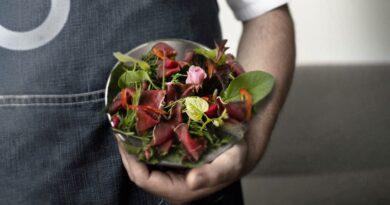 Friuli Venezia Giulia. La Nuova Cucina – Rinviate al 26 novembre le ultime due cene-laboratorio del ciclo autunnale