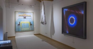 """Per l'ottava edizione di """"Arte in Palazzo"""" inaugura la mostra d'arte """"Sistema Chiuso?!"""" di Luciano Bellet"""