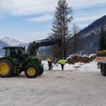 Animali selvatici in difficoltà per le nevicate abbondanti, attivato il foraggiamento artificiale
