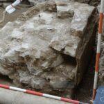 Reperti preromani a Trieste, la Soprintendenza: uno dei più importanti ritrovamenti degli ultimi decenni