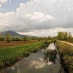 Giornata della Terra: Confagricoltura FVG rilancia il ruolo delle imprese agricole nella difesa dell'ambiente