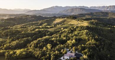 Michele Ciani di Aquila del Torre, il nuovo e-shop con degustazione di grandi vini e prodotti bio del Friuli