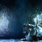 Ente Regionale Teatrale del Friuli Venezia Giulia: presentati i 28 cartelloni della stagione