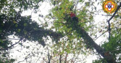 Parapendista cade e rimane sospesa su albero spaccato. Delicata operazione di recupero