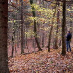 """Con """"Sapori del Carso"""" due escursioni a cura di Curiosi di Natura"""
